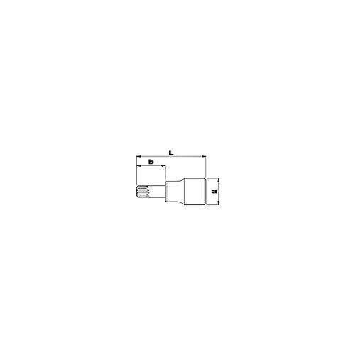 USAG 233 1//2 NXZN/_8x24 U02332156 Chiave a Bussola per Viti con Impronta XZN