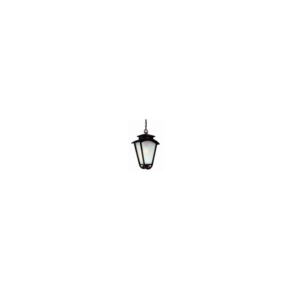 Troy Lighting F1578DC Hampton 1 Light Outdoor Hanging Lantern in Distressed Copper with Frost Wave Seeded glass