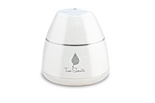 Nebulizer Diffuser for Essential Oil Aromatherapy by Two ...