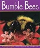Bumble Bees (Insects)