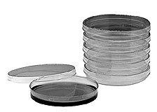 Disposable Petri Dishes, Sterile, 100 x 15 mm, 20 per Sleeve, 500 per Case