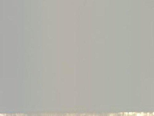 - 2 Oz Heavy Body Acrylic Paints Color: Neutral Gray 6