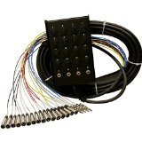 Rapco 12 Channel (Rapco Horizon SMC1604FBQ50 16 x 4 50-Feet Audio Snake with 1/4-Inch 16-Channel)