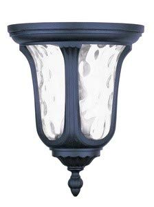 Livex Lighting 7861-04 Oxford - Two Light Outdoor Flush Mount, Black Finish with Clear Water Glass