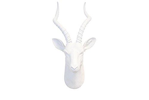 axidermy Antelope Head Wall Mount, Large, Flat White (Large Flat Wall Mount)