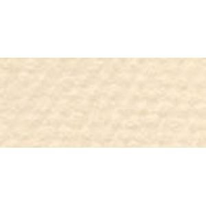 Canson C100510122 16 in. x 20 in. Art Board Eggshell - Pack of 5 by Canson