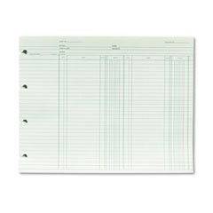 * Accounting, 9-1/4 x 11-7/8, 100 Loose Sheets/Pack