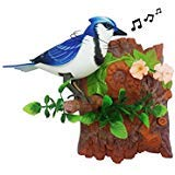 Unido Box Heat Sensor Chirping Bird with Sweet Sound and Body Move As It Chirps (Vertical, Blue Jay)