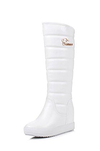 AgooLar Damen PU Hoher Absatz Spitz Zehe Stiefel, Weiß, 40
