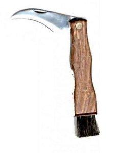 Pilzmesser, mit gezahntem Klingenrücken und Bürste, Klappmesser/ Taschenmesser mit Holzgriff