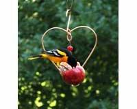 Songbird Essentials SEHHLBAP Love Birds Apple Feeder