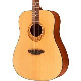 Luna Gypsy Series Muse Dreadnought Acoustic Guitar with Case