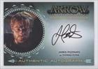James Pizzinato; Thomas Flynn (Trading Card) 2015 Cryptozoic Arrow Season 2 - Authentic Autographs #JP
