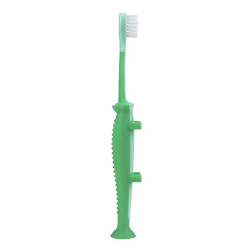 21n 4FBw1%2BL - Dr. Brown's Toddler And Baby Toothbrush, Crocodile, Green