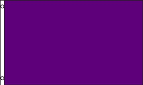 Purple Solid Color 3x5 ft polyester Flag