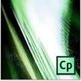 Adobe Captivate 7 englisch [PC Download]