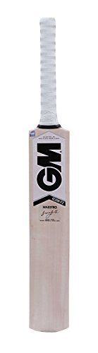 GM Icon F2 Maestro Kashmir Willow Cricket Bat (Short Handle) by GM