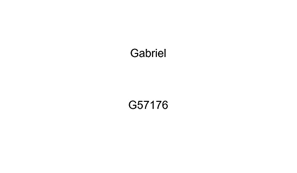 Gabriel G57176 Ultra ReadyMount Loaded Strut Assembly