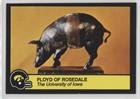 Floyd of Rosedale (Football Card) 1989 Iowa Hawkeyes Team Issue - [Base] - Rosedale Shops