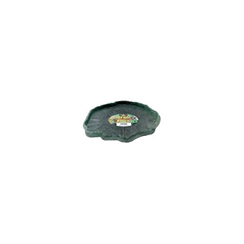 Reptile Food Dish [Set of 3] Size: X-Large (8.33' H x 1.06' W x 0.79'' L) by Zoo Med