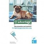 Advantage 100 Spot-On Solution for Do...
