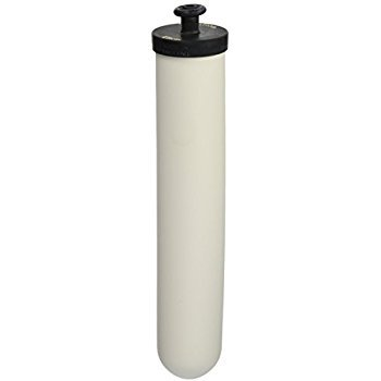 10 inch Doulton-Berkey-AquaCera Style Replacement Filter with Silver and Active Carbon.