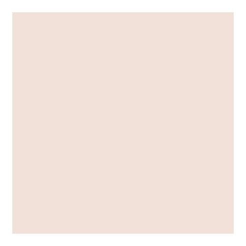 Lee Filters Cosmetic Peach 48''x25' Roll Gel Filter by Lee Filters