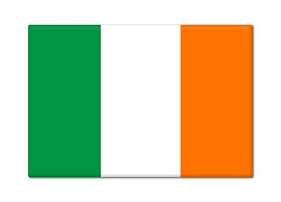 Irish Flag Ireland Fridge Magnet ()