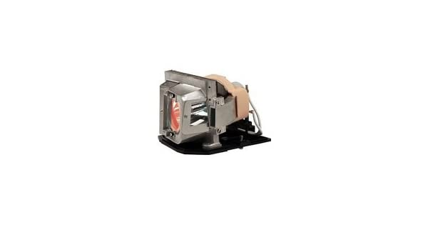 IET Lamps with 1 Year Warranty Genuine OEM Replacement Lamp for Optoma W401 X401 Power by Osram EX763 Projector