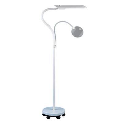 Daylight Floorstanding Reading, Art & Craft Lamp D23030-01: Amazon ...