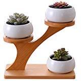 3 tier pot - 4