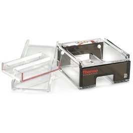 - Thermo Fisher Owl D2-UVT Gasketed UVT Gel Tray for D2 Wide-Gel Horizontal Electrophoresis System
