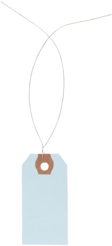 Aviditi G11013B Pre-Wired Shipping Blank Tag, 13 Point Cardstock, 2-3/4