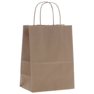 8'' x 4'' x 10'' Kraft Paper Bags Case of 250 by Retail Resource