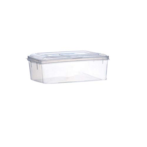 Rellar Food Storage Box Transparent Lunch Containers Food Fruit Storage Containers Food Storage & Organization Sets from rellar