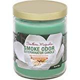 Smoke Odor Exterminator 13oz Jar Candles (Southern Magnolia, 2)