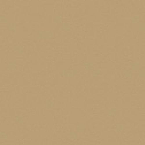 Karen Foster - Papel de cartulina de 30,48 x 30,48 cm, Tawny Light, 1