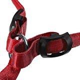 elegantstunning Multi-Colors LED Flashing Safety Pet Dog Belt XL Red