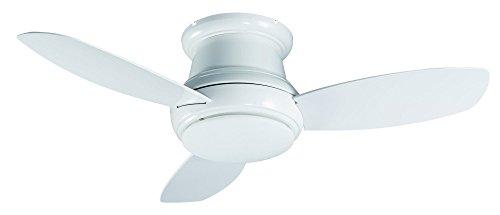 44 fan ceiling - 5