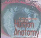 A Microscopic Review of Human Anatomy, Bondello, 0787276332