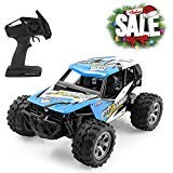 FITMAKER RC Cars, All Terrain Remote Control High-Speed Off-Road 2.4Ghz 2WD Monster Truck (Upgraded Version), New-Blue