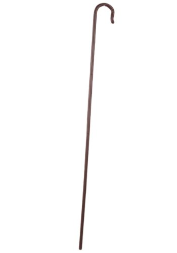 [Forum Novelties Men's Shepherd's Crook, Brown, One Size] (Shepherd Child Costumes)