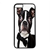 wskshop iPhone 6 Plus Case, Customized Handsome Business Suit Boston Terrier Dog Plastic Cover Case for iPhone 6 Plus