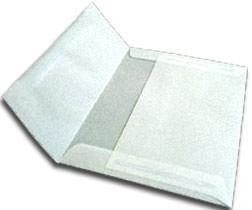 A-2 Metallic Platinum Translucent Vellum RSVP Envelopes (Straight Flap, (4 3/8