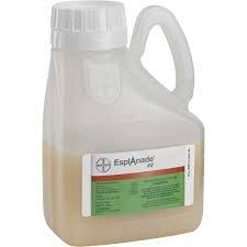 Esplanade EZ Herbicide (Quart)