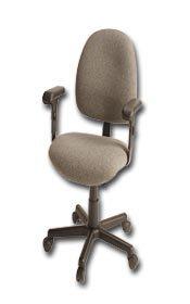 Weight: 35 Ec243S Option B: Casters Hec243S Phillocraft Option A: Gray Olefin Tilt Adjustment Seat: 16-1//2-21-1//2 Description: 3 In Back Hgt Adj-Non Tilt Deluxe Ergonomic Seating