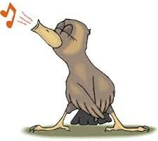 Original Magic Tweeting Noisemaker Bird Whistle 12 Pack Swiss Warbler