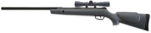 Gamo Big Cat .22 Caliber Air Rifle