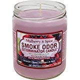 Smoke Odor Exterminator 13 oz Jar Candles Mulberry Spice, (2) ()