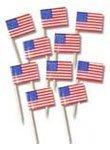 USA Theme Flag Picks - Pack of 10